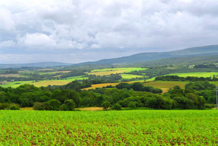 Scenic view on summer agricultural landscape in Brittany, France photo