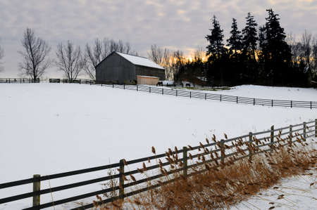 Farm with a barn and horses in winter at sunset photo