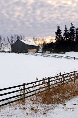 ranches: Farm with a barn and horses in winter at sunset