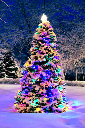 Decorated christmas tree outside with lights covered with snow photo