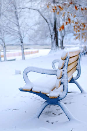 and winter: Winter bench covered with snow in an empty park. Beach area, Toronto, Canada. Stock Photo