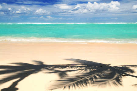 Pristine tropical beach with palm trees shadows on Caribbean island. Colors are natural. photo