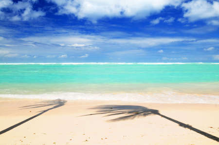 Pristine tropical beach with palm trees shadows on Caribbean island. Colors are natural. Stock Photo - 2774069