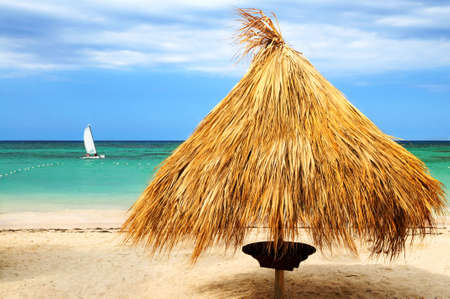 Tropical beach of a Caribbean island with palm branches shelter photo