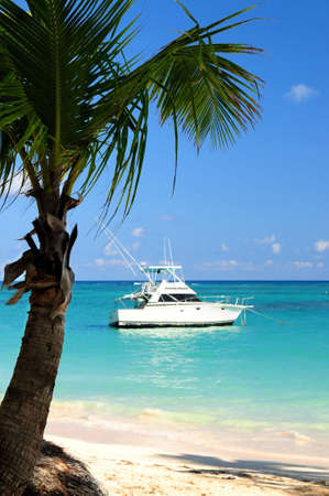 Palm tree and fishing boat at tropical beach