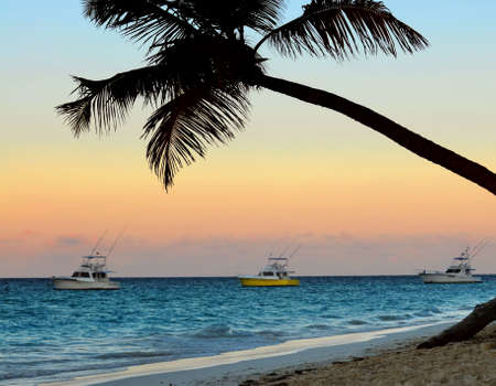 Palm tree and fishing boats at tropical beach at sunset. Focus on palm tree. photo
