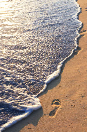 Tropical sandy beach with footprints and ocean wave photo