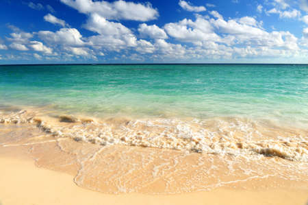 ocean waves: Tropical sandy beach with advancing wave and blue sky Stock Photo