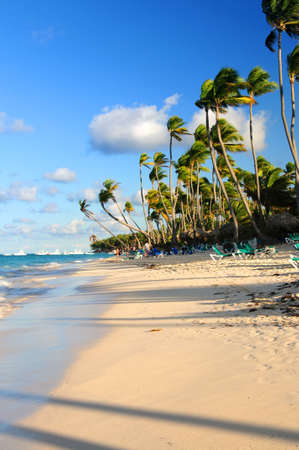 Tropical sandy beach with palm trees and fishing boats photo