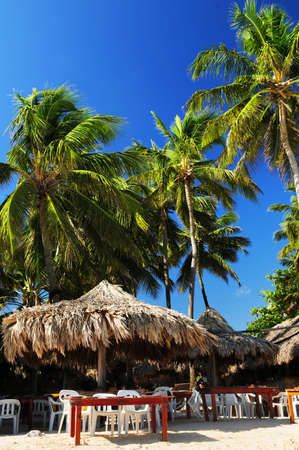 Outdoor restaurant on tropical beach with palm trees photo