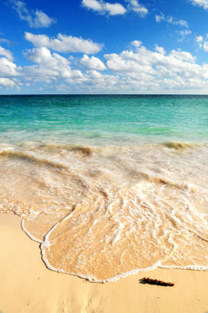 advancing: Tropical sandy beach with advancing wave and blue sky Stock Photo