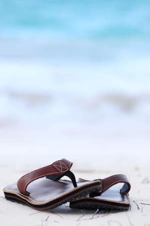 Flipflops on a sandy ocean beach - summer vacation concept Stock Photo - 2891935