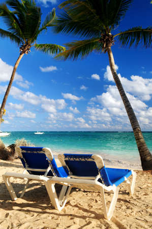 Sandy beach of tropical resort with palm trees and two reclining chairs photo