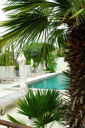 Swimming pool of mediterranean villa in French Riviera