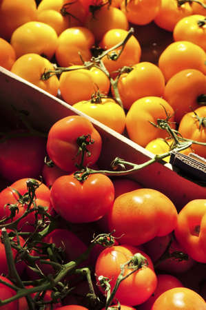 Colorful tomatoes for sale on farmer's market Stock Photo - 3142011