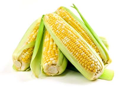 Ears von frischem Mais isoliert auf weißem Hintergrund  Standard-Bild