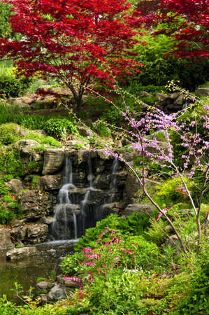 Cascading waterfall in japanese garden in springtime Stock Photo - 3143676