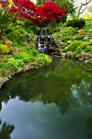 Cascading waterfall and pond in japanese garden Stock Photo - 3185482