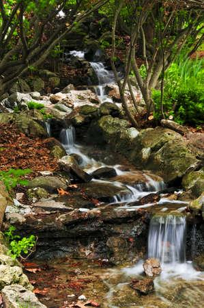 Creek with small waterfalls in japanese zen garden photo