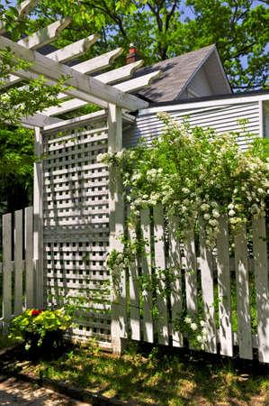 latticework: White trellis and fence with flowering bridal wreath shrub in a garden Stock Photo