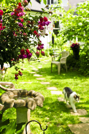 path cottage garden: Path of stepping stones leading to a house in lush green garden Stock Photo
