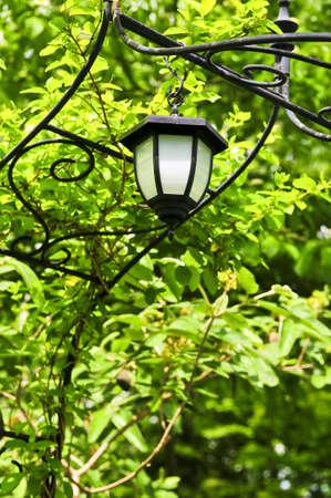 Wrought iron arbor with lantern in lush green garden Stock Photo - 3227496