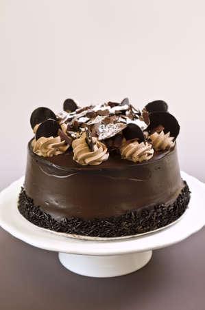 皿の上のフロスティングと丸いチョコレート ケーキ 写真素材 - 3352440