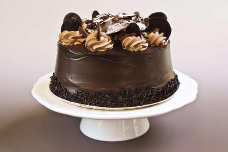 cake decorating: Ronda de pastel de chocolate con frosting en un plato