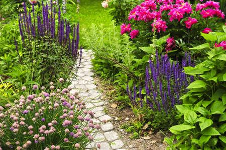 Weelderig bloeiende zomertuin met geplaveid pad
