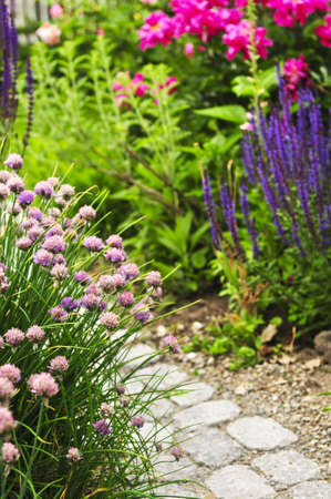 perennials: Lush blooming summer garden with paved path Stock Photo