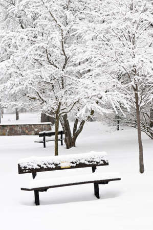 Winter park landscape with bench under the snow Stock Photo - 3564696