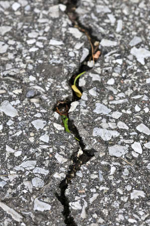 Crack in old asphalt pavement close up Stock Photo - 3628564
