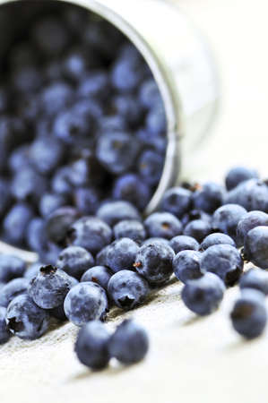 Fresh blueberries spilling out of a pail close up photo