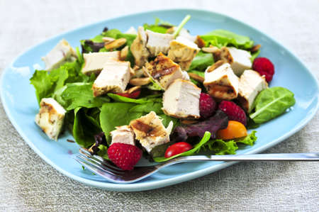 Healthy green salad with grilled chicken breast photo