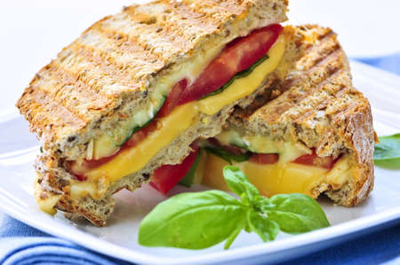 Grilled cheese and tomato sandwich on a plate photo