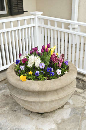 planter: Stone planter with spring flowers on house patio Stock Photo