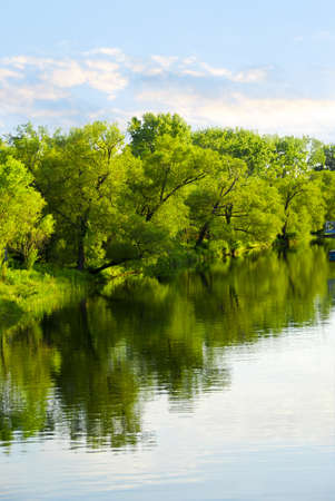 Reflection of green trees in calm water with blue sky photo