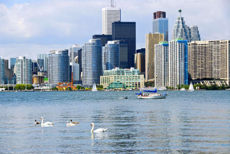 Toronto harbor skyline with skyscrapers sailboat and swans photo