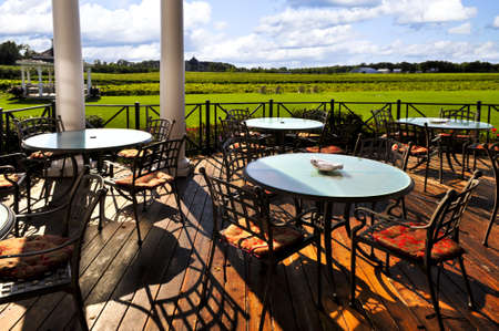 oenology: Patio chairs and tables near vineyard at winery Stock Photo