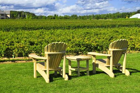Muskoka chairs and table near vineyard at winery photo