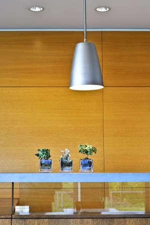 jardineras: Un interior moderno con l�mparas y paneles de madera