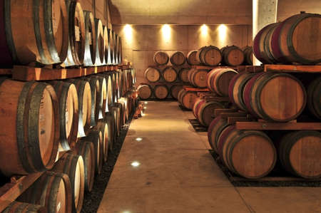 Stacked oak wine barrels in winery cellar photo