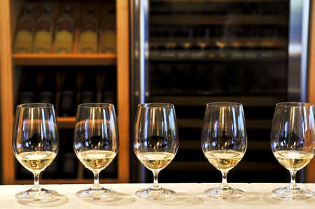 Row of white wine glasses in winery tasting event Stok Fotoğraf
