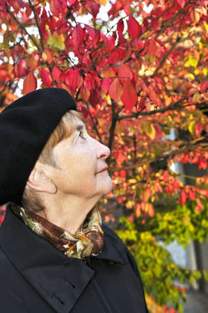 Senior woman looking up in fall park Stock Photo - 4688002