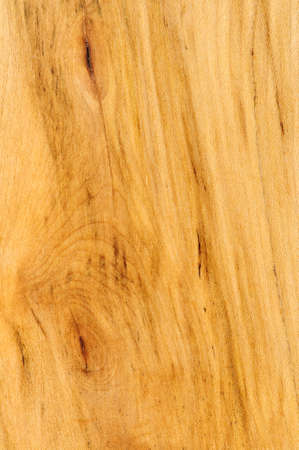 floor covering: Close up of prefinished hardwood flooring sample