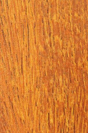 floor covering: Close up of prefinished hardwood flooring sample