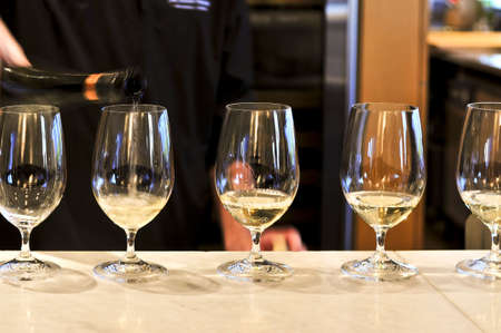 Row of white wine glasses in winery tasting event Banque d'images