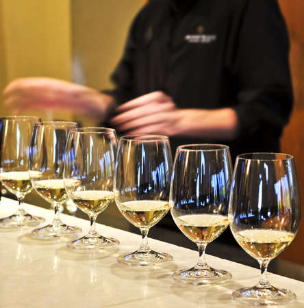 Row of white wine glasses in winery tasting event Stock Photo