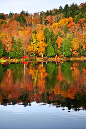 provincial forest parks: Forest of colorful autumn trees reflecting in calm lake