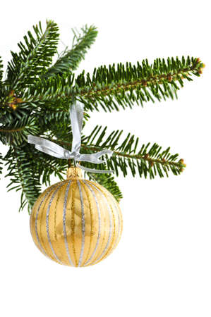 Golden Christmas decoration hanging on pine branch isolated on white Stock Photo - 5212856